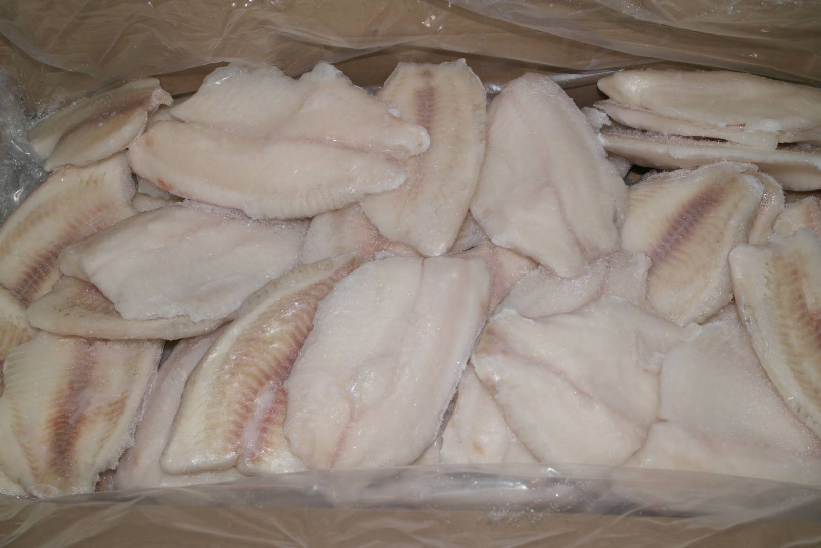 TILAPIA FILET 3-5